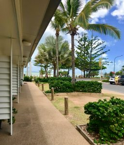 Surfside Motel's View